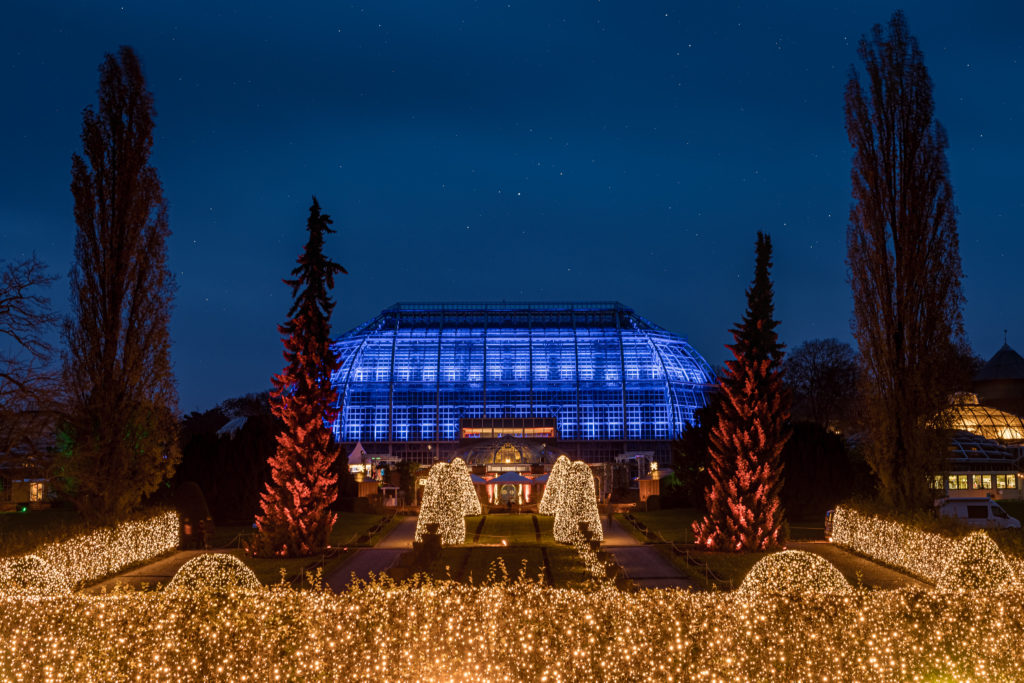 Christmas Garden Berlin 2019 - The Great View ©Christmas Garden/Michael Clemens